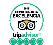 Certificado Excelencia TripAdvisor 2019 free tour madrid